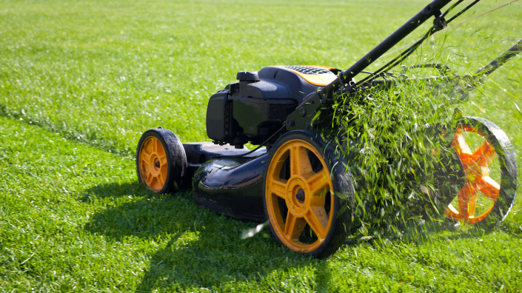 Commercial Landscape Maintenance & Commercial Lawn Care